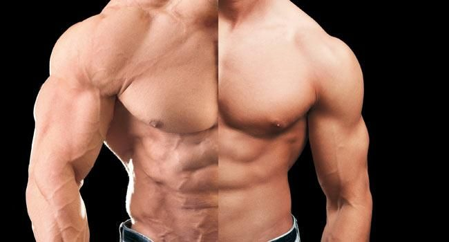 hgh muscle gain